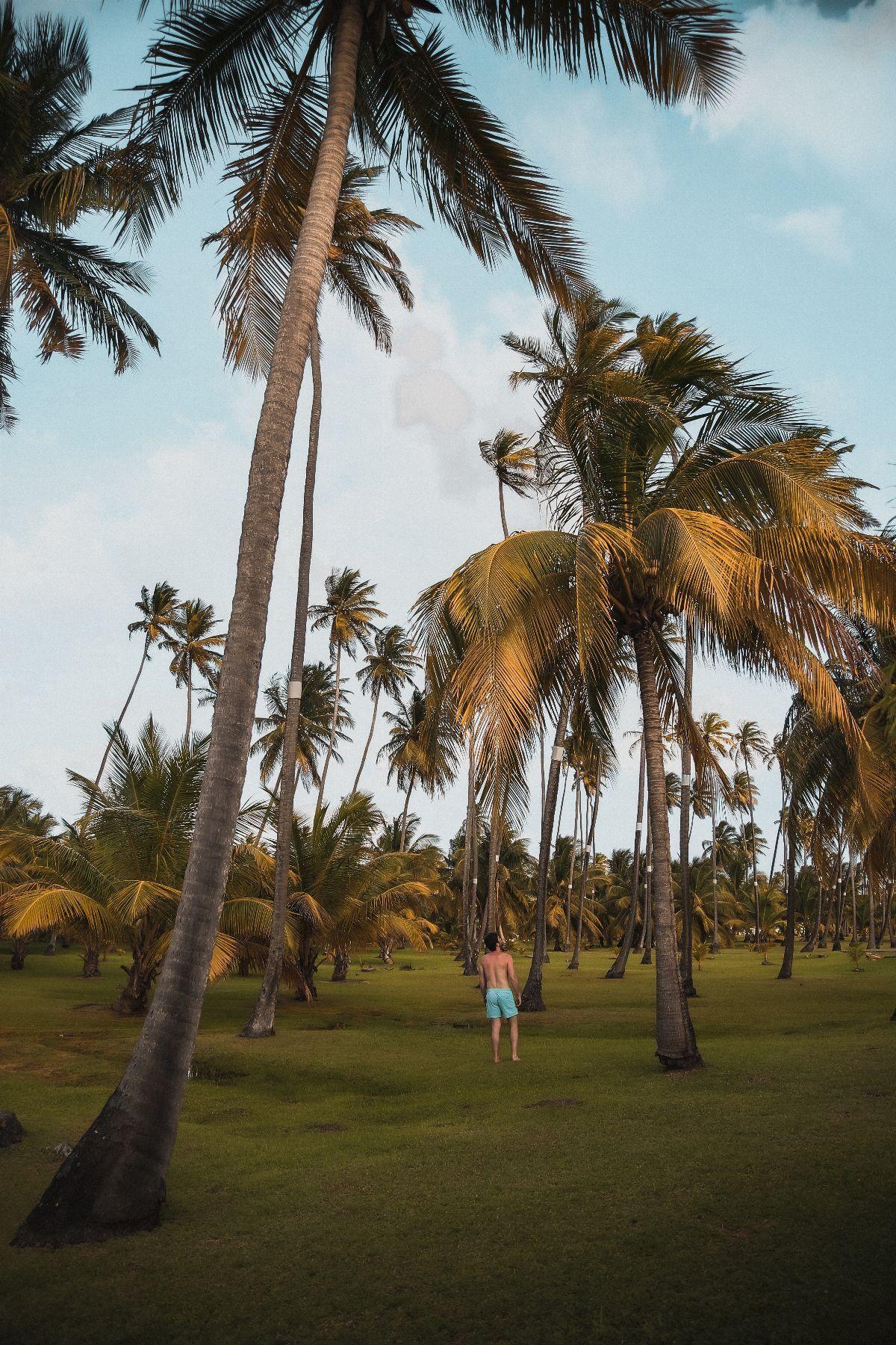 Club Med Les Boucaniers - Martinique